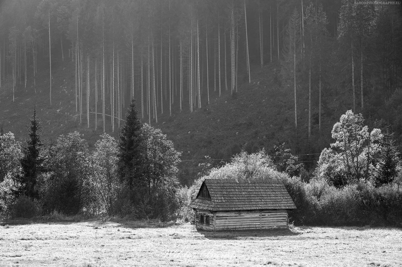 Kliknij obrazek, aby uzyskać większą wersję  Nazwa:Fotografia Czarno-Biała (1).jpg Wyświetleń:5 Rozmiar:851,5 KB ID:4429