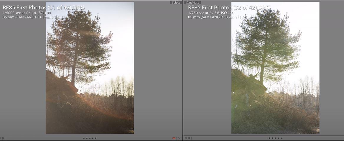 Kliknij obrazek, aby uzyskać większą wersję  Nazwa:samyang.JPG Wyświetleń:285 Rozmiar:75,6 KB ID:4693