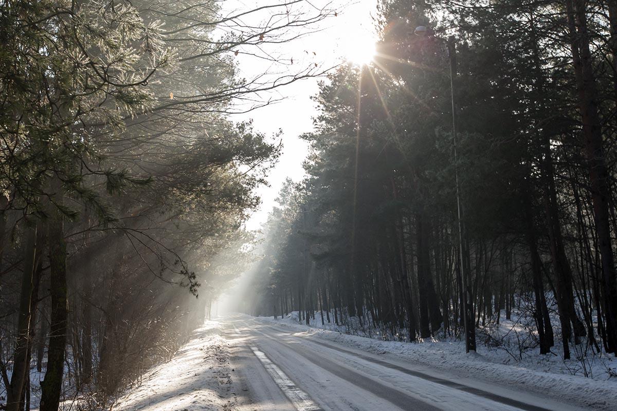 Kliknij obrazek, aby uzyskać większą wersję  Nazwa:Pierwsza zima od wielu lat__022.JPG Wyświetleń:120 Rozmiar:242,9 KB ID:5887